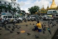 Les pigeons de la Sule Pagoda, Yangon. Cette femme propose aux gens de donner à manger au pigeons.